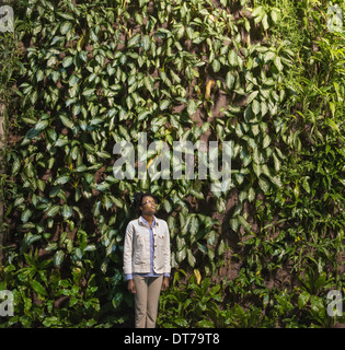 A woman looking up at a high wall covered in climbing plants and foliage. - Stock Photo