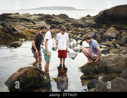 A small group of people standing in shallow water rock pooling finding marine life on the beach USA - Stock Photo