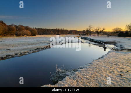 Ober Water, New Forest, Hampshire, UK - Stock Photo