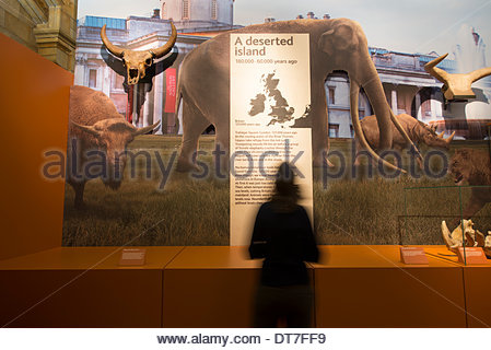 The Natural History Museum, London, UK. 11th February 2014. Britain: One Million Years of the Human Story exhibition - Stock Photo
