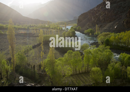Backlit trees lining the floor of the Ghizar River (Gilgit River) Valley near Khonan Deh, seen from the Shandur - Stock Photo