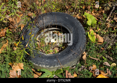Litter in the countryside - Tires - Stock Photo