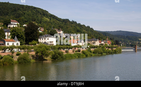 Wellmich and Castle Maus in the Rhine Valley, Germany, Europe - Stock Photo