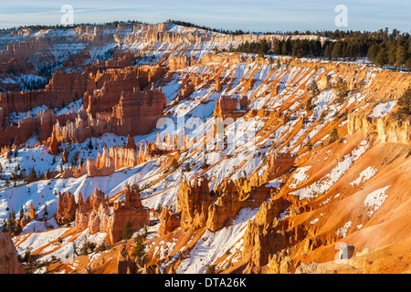 Winter in Bryce Canyon National Park, Utah - USA - Stock Photo