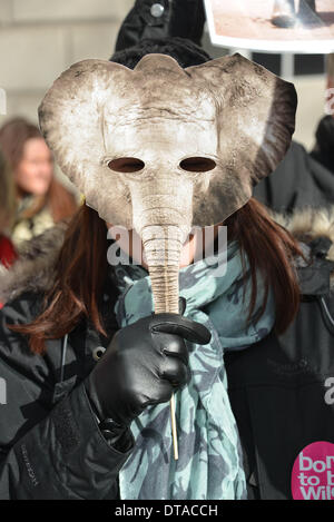 London, UK. 13th Feb 2014. Animal protesters Peaceful demo the Illegal Wildlife Trade Summit outside Marlborough - Stock Photo