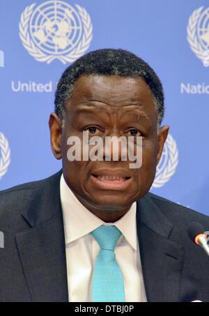 New York, USA. 12th Feb, 2014. Executive Director of UNFPA, United Nationa Population Fund, Babatunde Osotimehim - Stock Photo