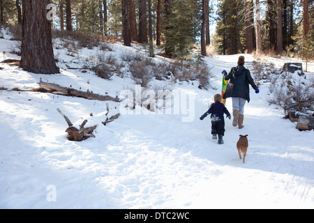 Toddler and grandmother with sledge in snowy forest - Stock Photo
