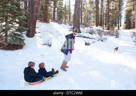 Grandmother pulling grandsons on sledge in snowy forest - Stock Photo