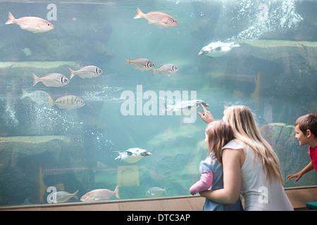 Young mother and two children watching penguins diving in aquarium - Stock Photo
