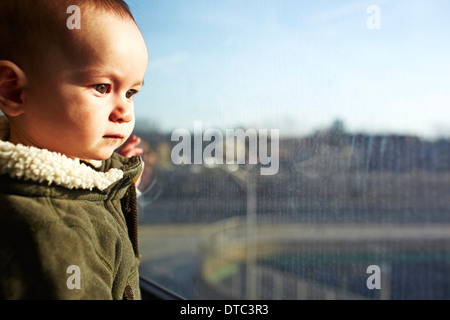 Close up of baby boy staring out of window - Stock Photo