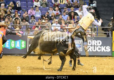St. Louis, Missouri, USA. 14th Feb, 2014. February 14, 2014: Rider Jory Markiss (11) gets thrown from bull Ink Spots - Stock Photo
