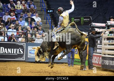 St. Louis, Missouri, USA. 14th Feb, 2014. February 14, 2014: Rider Jory Markiss (11) on bull Ink Spots during the - Stock Photo