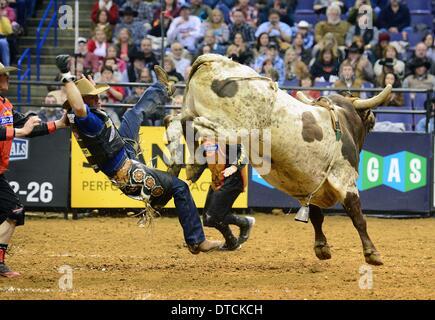 St. Louis, Missouri, USA. 14th Feb, 2014. February 14, 2014: Rider Harve Stewart (47) on bull Ambush during the - Stock Photo