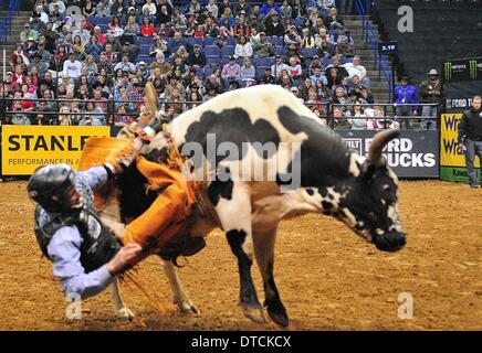 St. Louis, Missouri, USA. 14th Feb, 2014. February 14, 2014: Rider Ryan Dirteater (14) on bull Freaky Friday during - Stock Photo