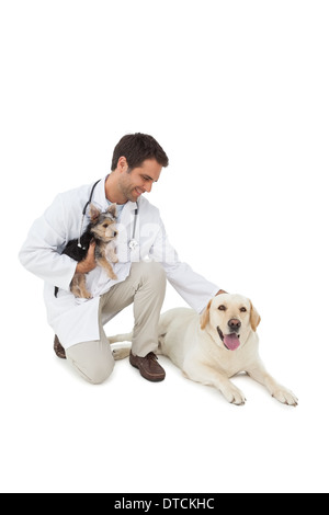 Smiling vet posing with yorkshire terrier and yellow labrador - Stock Photo