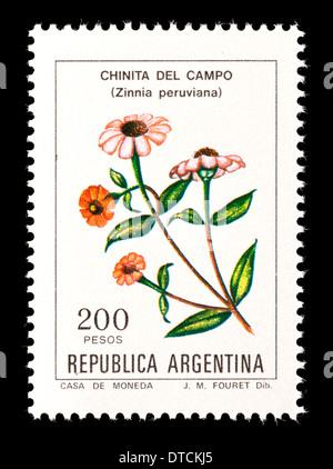 Postage stamp from Argentina depicting zinnias (Zinnia peruviana) - Stock Photo