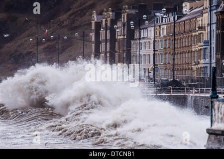 Aberystwyth Wales UK, Saturday 15 Fen 2014 Winds gusting up to 60-70mph drive huge waves pounding against the sea - Stock Photo