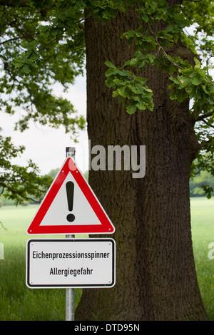 Eichen-Prozessionsspinner, Thaumetopoea processionea, oak processionary moth, Warnschild, warning, danger sign - Stock Photo