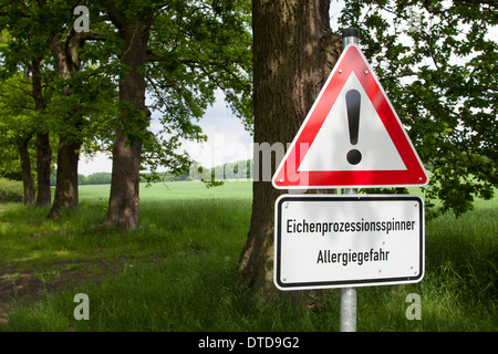 Eichen-Prozessionsspinner, Thaumetopoea processionea, oak processionary moth, Warnschild, warning, danger sign - Stock Photo