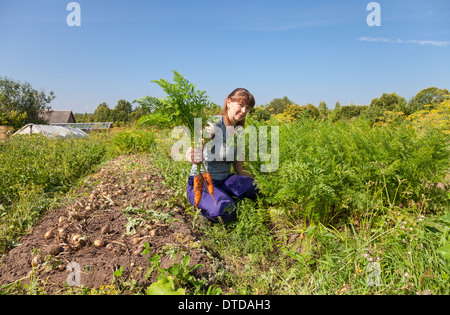 Young woman gardener holding a sheaf of carrots in her garden - Stock Photo