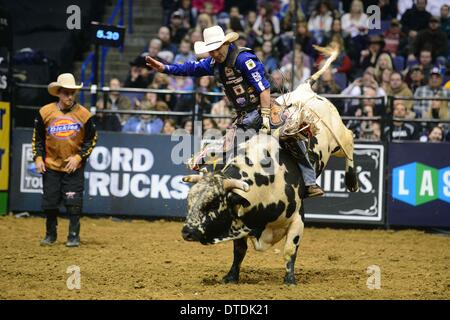 St. Louis, Missouri, USA. 15th Feb, 2014. February 14, 2014: Rider Renato Nunes on bull Emergency during the Professional - Stock Photo