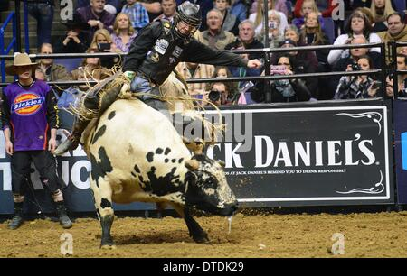 St. Louis, Missouri, USA. 15th Feb, 2014. February 14, 2014: Rider Harve Stewart on bull Gravedigger during the - Stock Photo