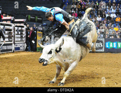 St. Louis, Missouri, USA. 15th Feb, 2014. February 14, 2014: Rider Jory Markiss on bull Happy Feet during the Professional - Stock Photo