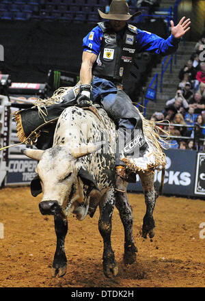 St. Louis, Missouri, USA. 15th Feb, 2014. February 14, 2014: Rider Eduardo Aparecido on bull Nashville during the - Stock Photo