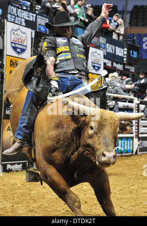 St. Louis, Missouri, USA. 15th Feb, 2014. February 14, 2014: Rider Guilherme Marchi on bull Packing Heat during - Stock Photo