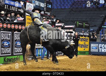 St. Louis, Missouri, USA. 15th Feb, 2014. February 14, 2014: Rider Douglas Duncan on bull My Kinda Party during - Stock Photo