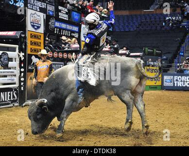 St. Louis, Missouri, USA. 15th Feb, 2014. February 14, 2014: Rider Ryan Dirteater on bull Depths of Despair during - Stock Photo