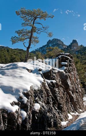 Snowed landscape, Natural Park Sierras de Cazorla Segura y Las Villas, Jaen-province, Region of Andalusia, Spain, - Stock Photo