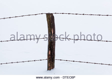 snowy fence post with barbed wire barbwire and signs for trails ...