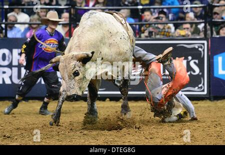 St. Louis, Missouri, USA. 16th Feb, 2014. February 16, 2014: during the third round of the Professional Bullriders - Stock Photo