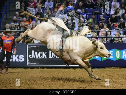 St. Louis, Missouri, USA. 16th Feb, 2014. February 16, 2014: Rider Mike Lee on bull Wipeout during the third round - Stock Photo