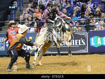 St. Louis, Missouri, USA. 16th Feb, 2014. February 16, 2014: Rider Harve Stewart on bull Freaky Friday during the - Stock Photo