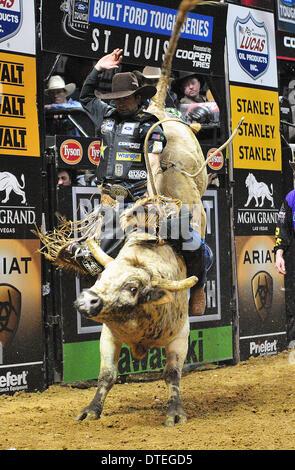 St. Louis, Missouri, USA. 16th Feb, 2014. February 16, 2014: Rider Fabiano Vieira on bull Soldier Boy during the - Stock Photo