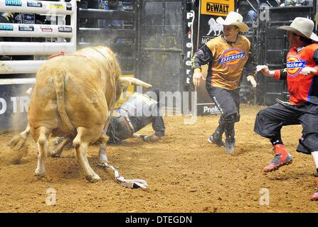 St. Louis, Missouri, USA. 16th Feb, 2014. February 16, 2014: Rider Guilherme Marchi after being thrown from bull - Stock Photo