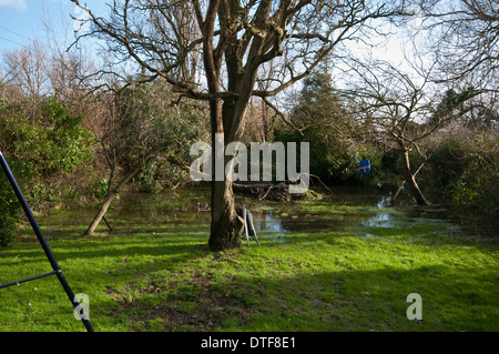Flooded Garden with a Fallen Tree after a Storm - Stock Photo