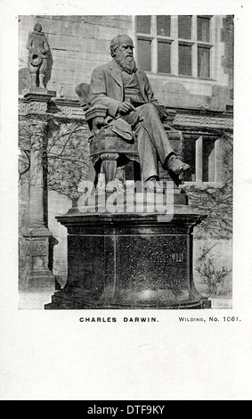 a biography of charles robert darwin the british scientist and founder of the evolutionary theory Evolution by natural selection: the london years, 1836–42 with his voyage over and with a £400 annual allowance from his father, darwin now settled down among the urban gentry as a gentleman geologist.