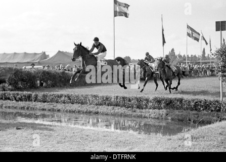 Hamburg, Germany, horse and jockey jumping over a ditch - Stock Photo