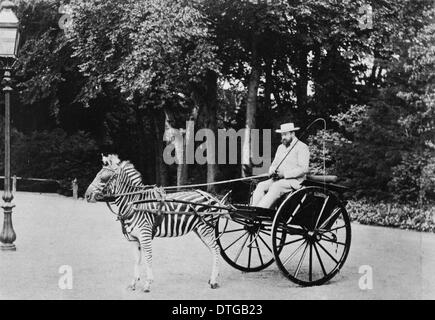 Lord Lionel Walter Rothschild (1868-1937) - Stock Photo
