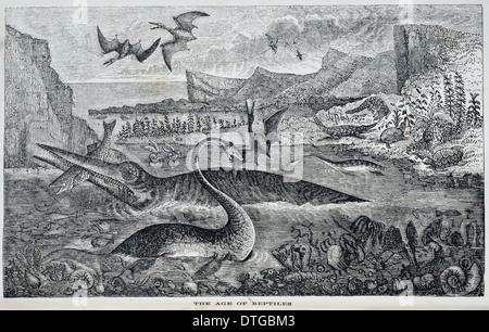 Ichthyosaurus, Pterodactylus, Plesiosaurus. - Stock Photo