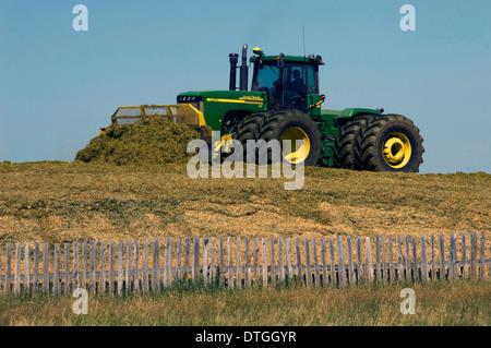 Moving manure at feedlot outside Pincher Creek, Alberta, Canada. - Stock Photo