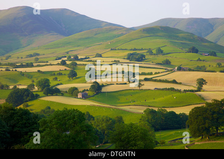 Pastoral Scene of Hill Farms below the Howgill Fells Yorkshire Dales National Park,Cumbria. Hay time - Stock Photo