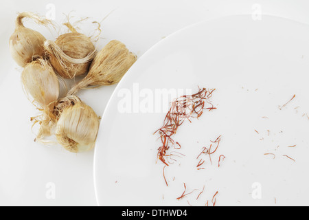 Saffron Corms and Spice - Stock Photo