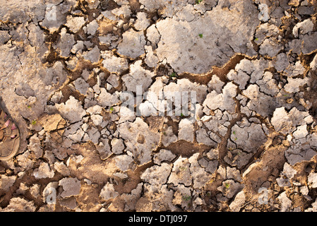 Dried up river bed in India - Stock Photo