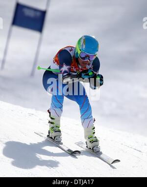 Krasnaya Polyana, Russia. 19th Feb, 2014. Ted Ligety of USA competes during the Men's Giant Slalom Alpine Skiing - Stock Photo