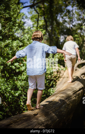 Two boys camping in the New Forest Walking along a log above the water balancing with their arms outstretched  Hampshire - Stock Photo