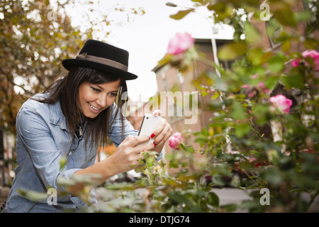 A girl in a brown trilby hat taking a picture of roses with a smart phone  Pennsylvania USA - Stock Photo
